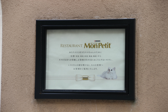 monpetit (7)