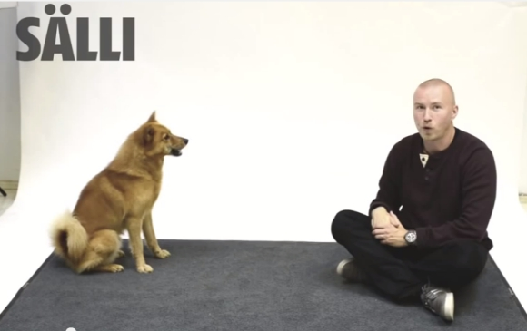 dogbark01