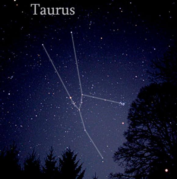 TaurusCCa