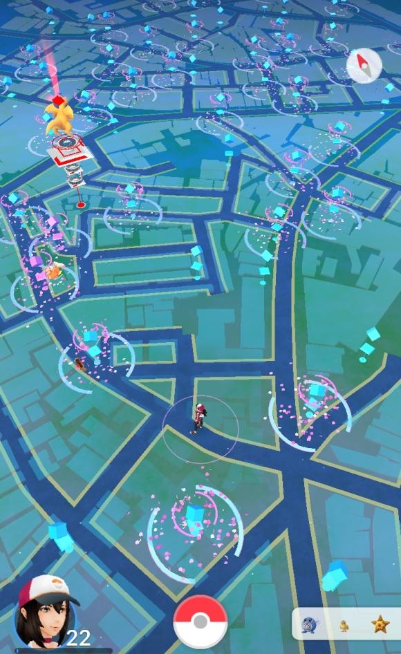 e_dogenmap02