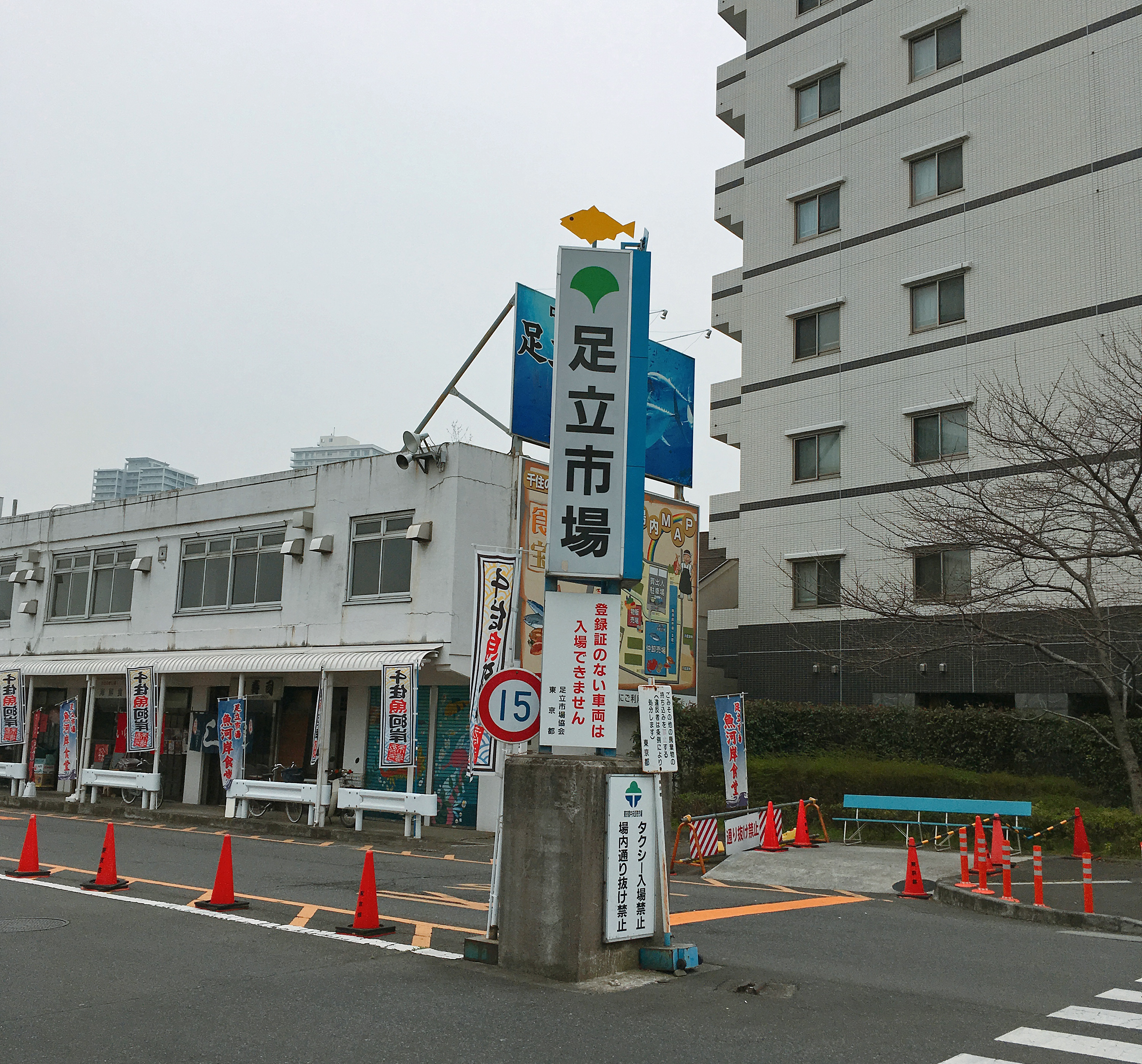 ashijyo2