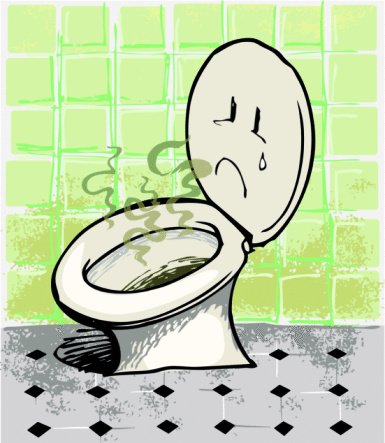 stinky-toiletw385h443