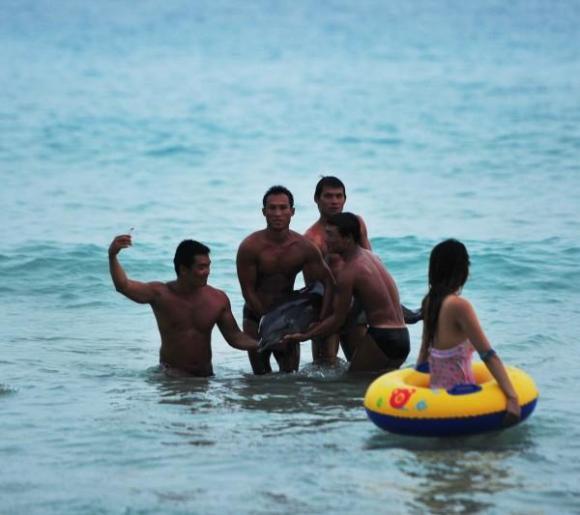 beached-dolphin-sanya-china-shore_2