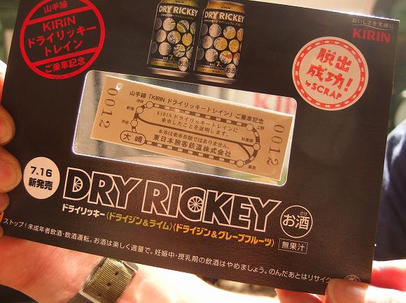 dryrickey17
