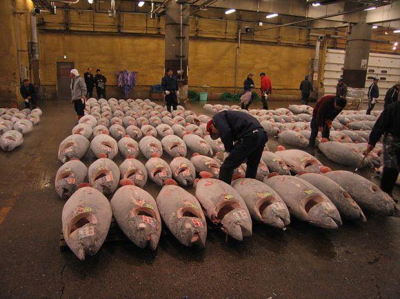 10. Tsukiji Outer Market