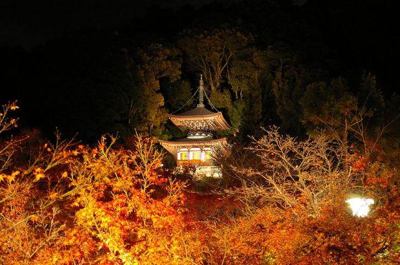 19. Eikan-dō Zenrin-ji