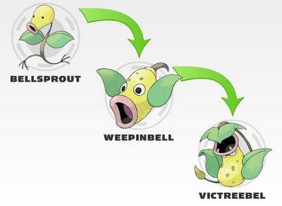 Bellsprout evolution