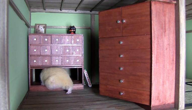 ninja dresser