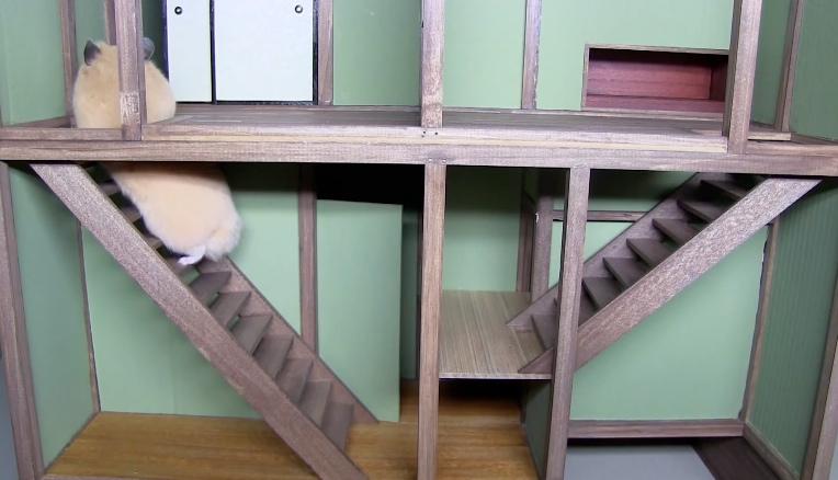ninja stairs