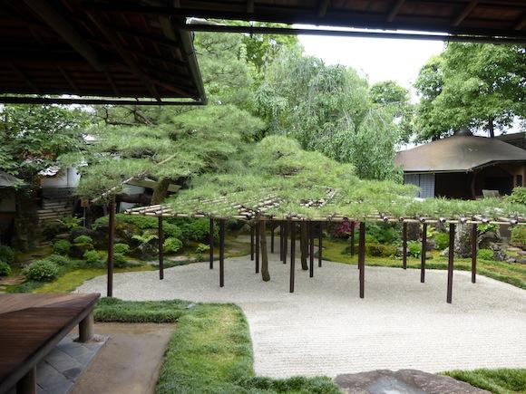 sumiya garden 2