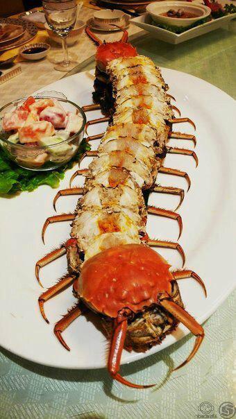 Centipede crab
