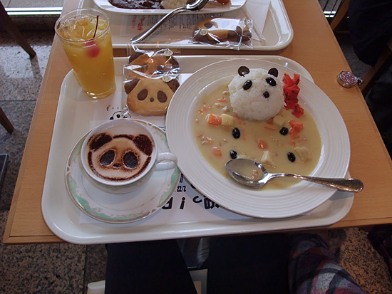Panda Lunch Special