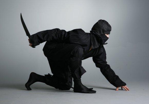 2014.01.20 ninja