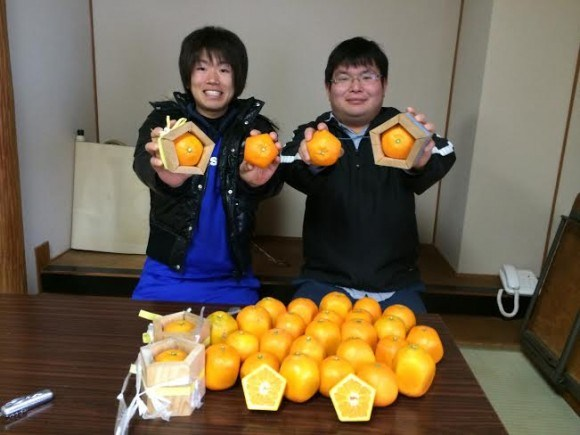 Ensure your fruit never rolls away with pentagon oranges
