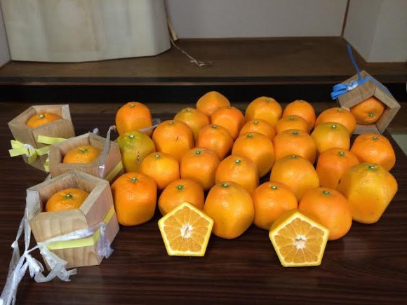 Ensure your fruit never rolls away with pentagon oranges4