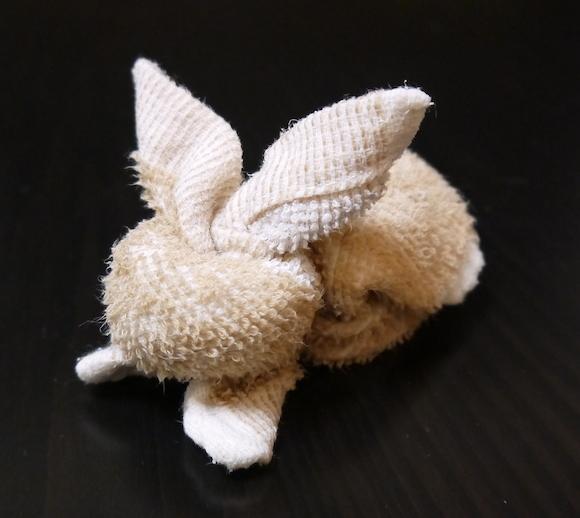 How to fold a Towel Bunny