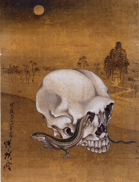 skull19