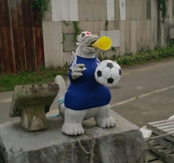 Team Japan supporter