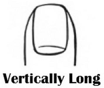vert-long
