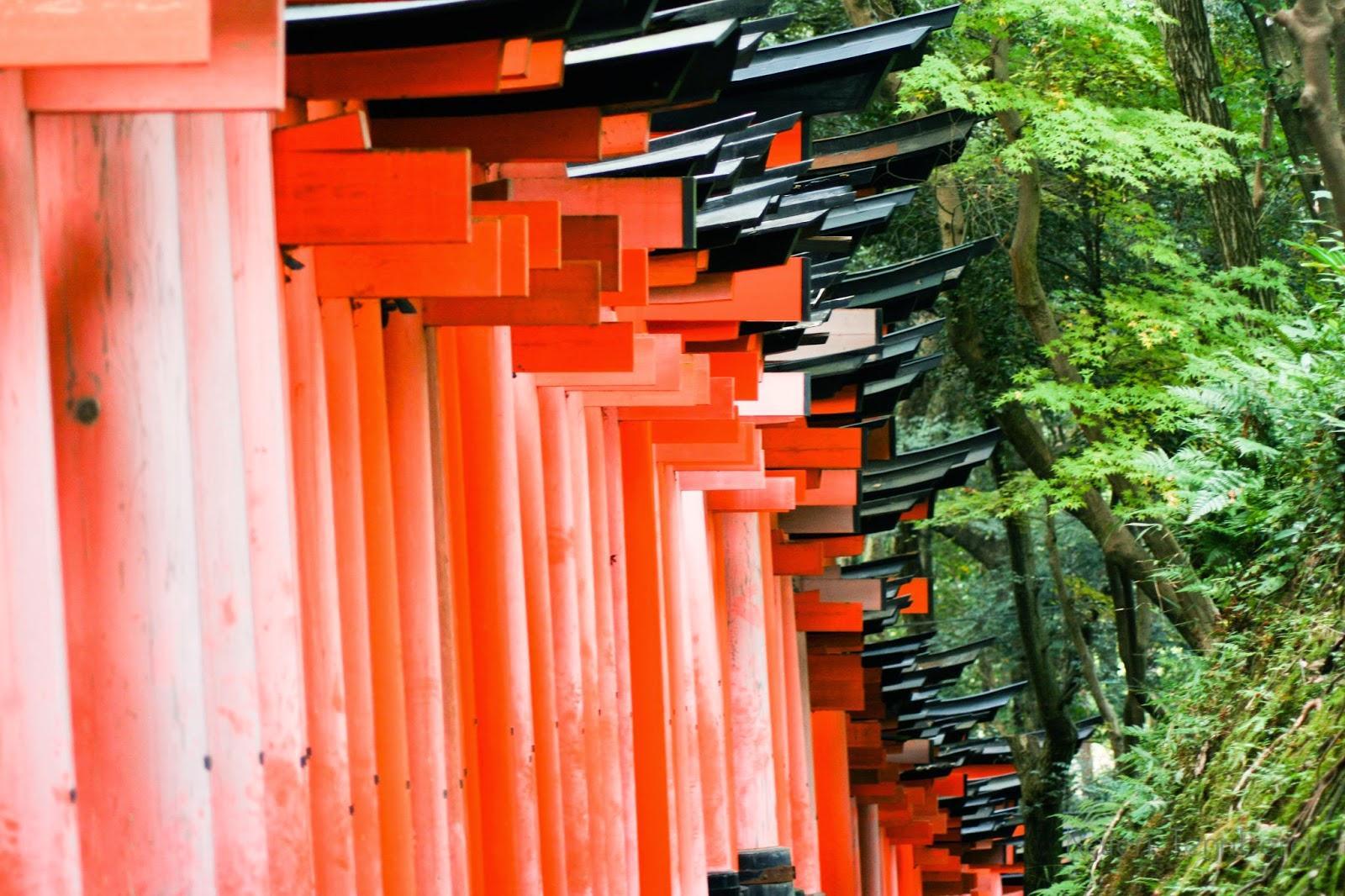 Kateri Tennberg Fushimi Inari-Taisha Torii