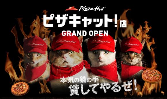 Pizza Hut Japan Pizza Cat shop franchise