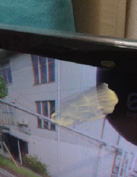 butter-tv-1