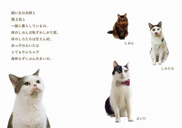 Mako photo book and stationery7