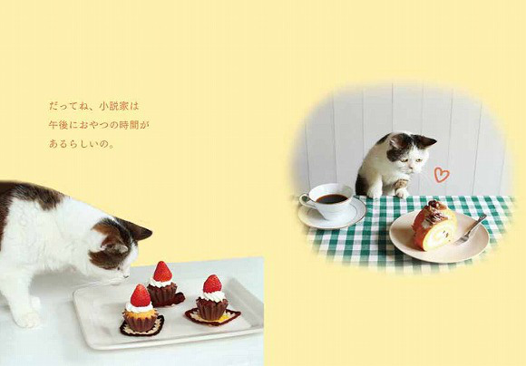Mako photo book and stationery8