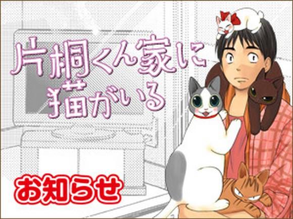 news_katagiri
