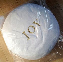 joy-mini