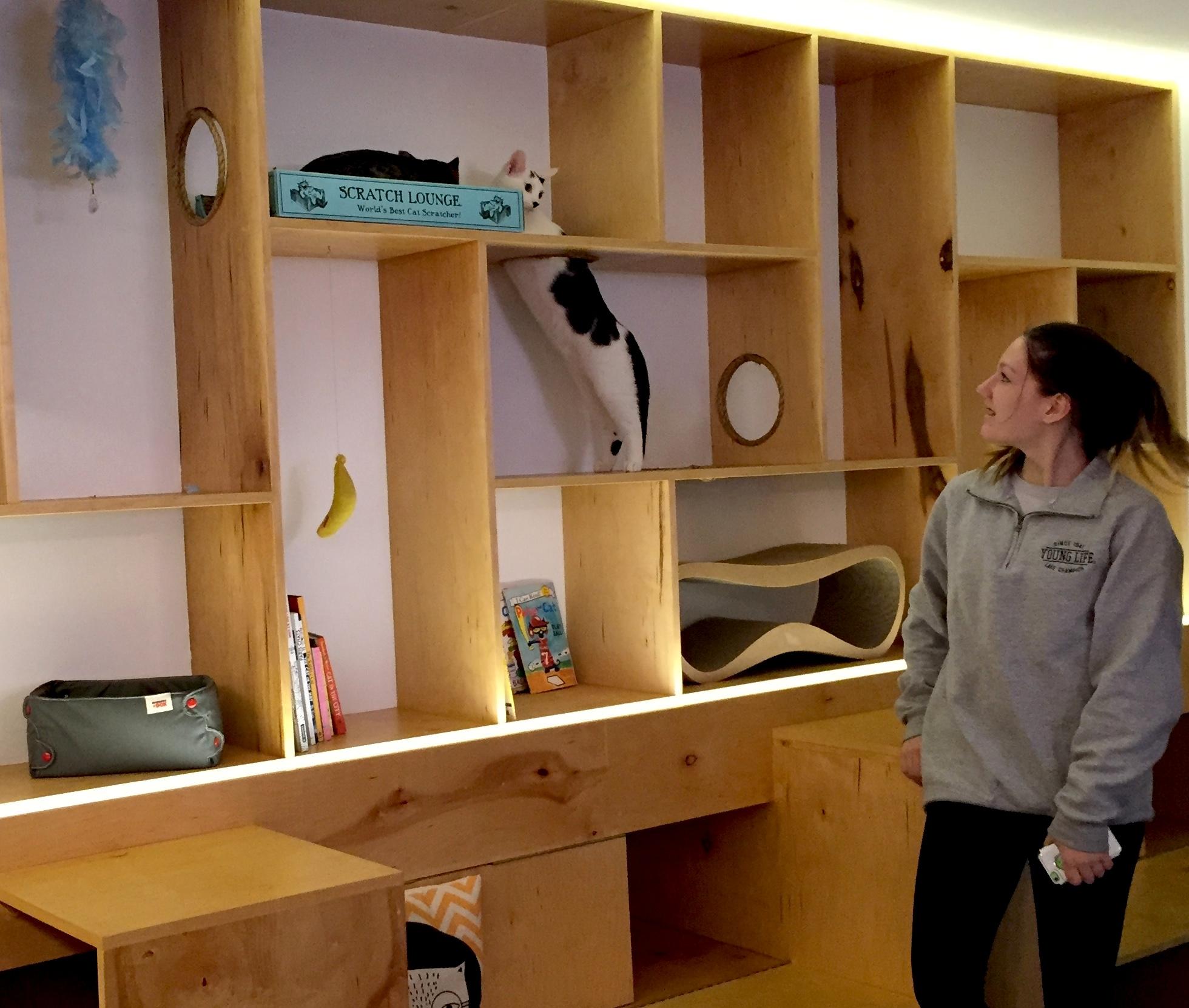 Roger-in-shelf