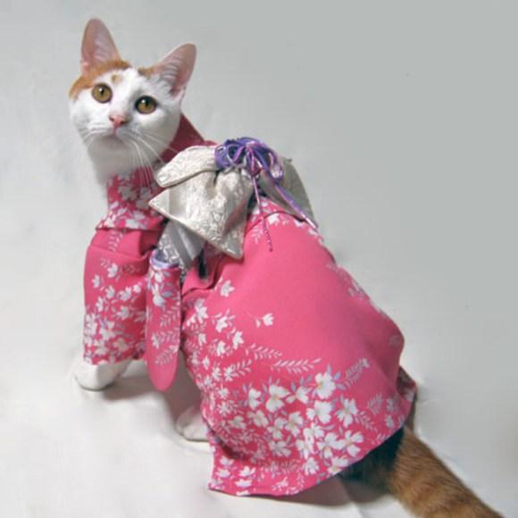 kimono-pink-nadesikogara3