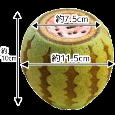 suika-size