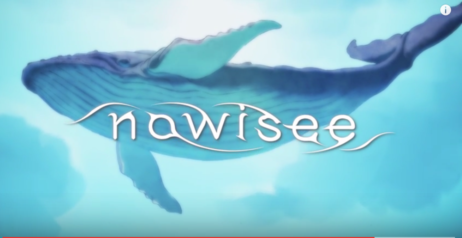 nowisee-09