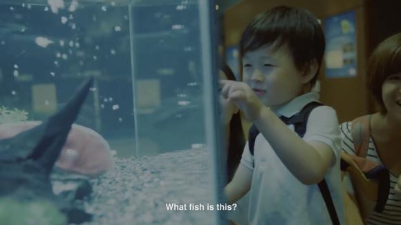 fish02a