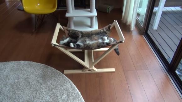 maru hammock 04