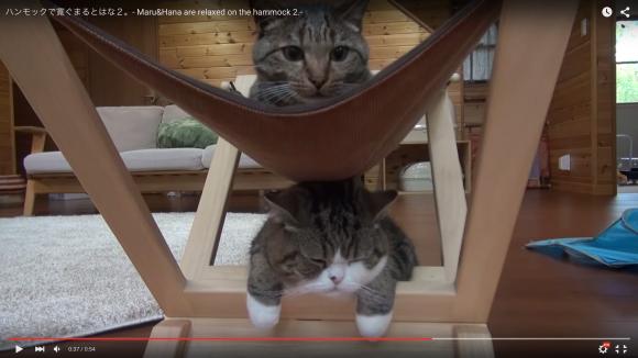 maru hammock top