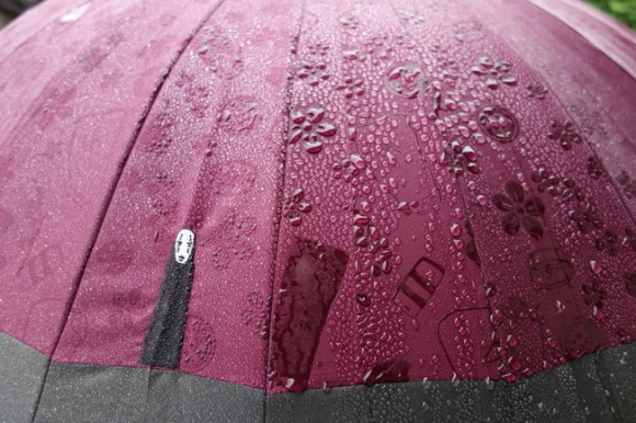umbrella83