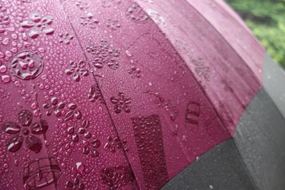 umbrella92