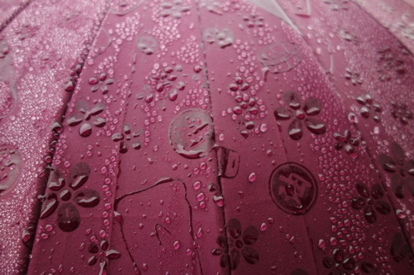 umbrella95