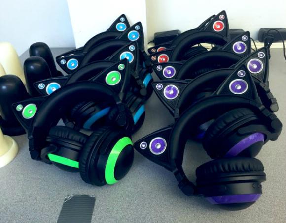 catearheadphones3