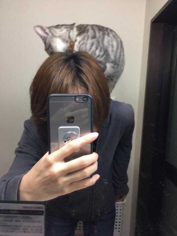 kitty (4)