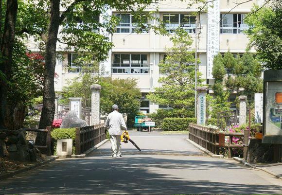 kamoagrischool
