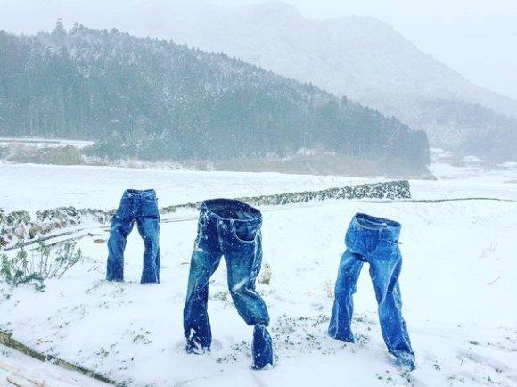 frozen pants top