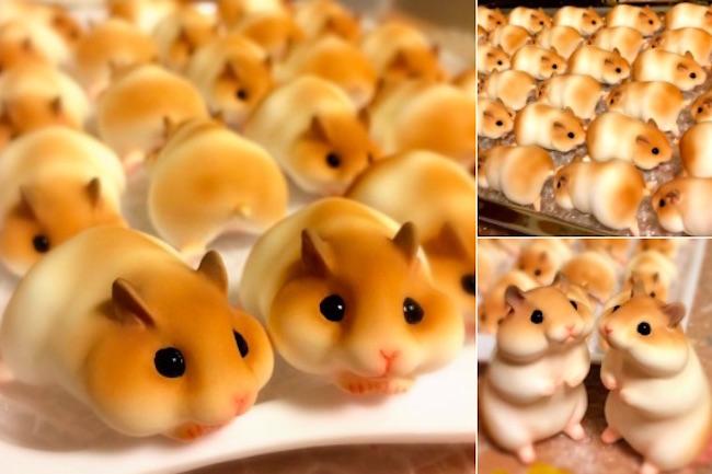 hamsters top