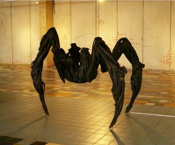 29_spider1