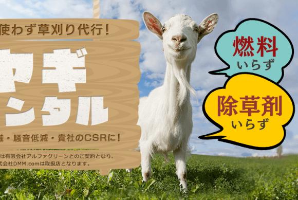 goat rental top