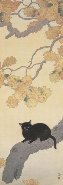 hishida cats 2