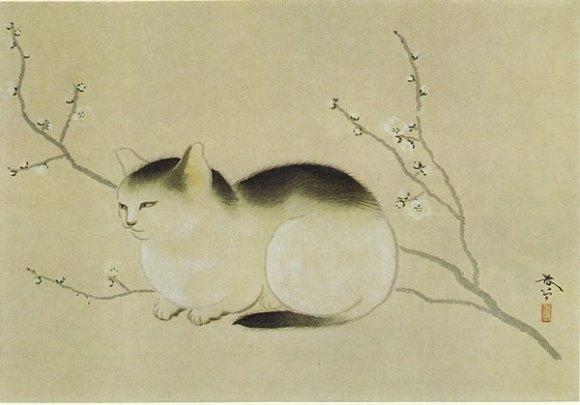 hishida cats 4
