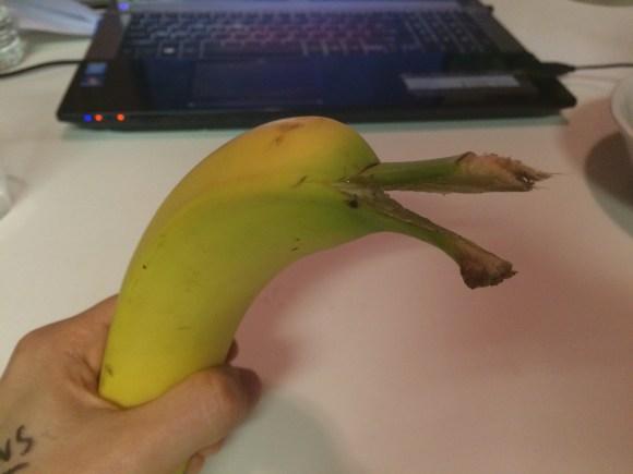 banana dolphin (2)